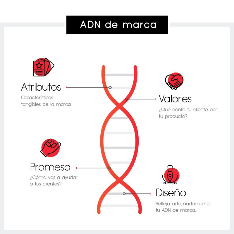 adn-de-marca-infografia
